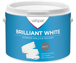 Brilliant White Walls and Ceiling