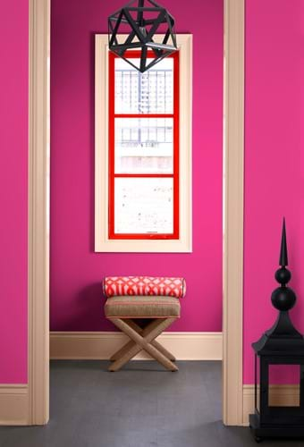Colour trends:Partner with Pink